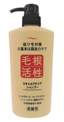 Шампунь для укрепления и роста волос JunLove Scalp clear shampoo 550мл: фото